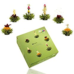 Aufblühtee mit 6 verschiedenen Sorten Teerosen | Fruchtig aromatisierter grüner Tee