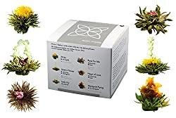 Aufblühtee / Teeblumen in der Geschenkbox mit 6 verschiedenen Weißtee-Teerosen