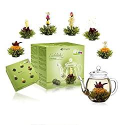 Erblühtee-Geschenkset mit Glaskanne | Grüner Tee, fruchtig aromatisiert